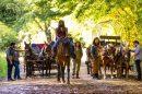 Η Michonne καβάλα σε άλογα στην πρώτη φωτογραφία από την 9η σεζόν του Walking Dead