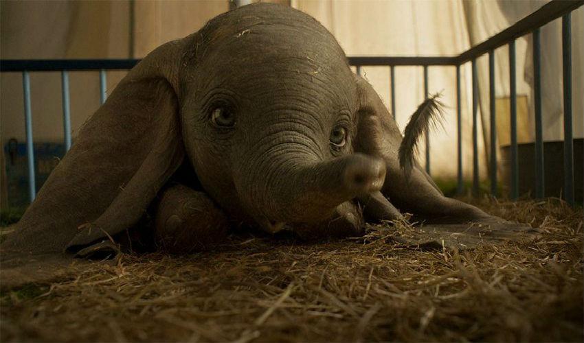 366a92b713f Dumbo | Το πιο γλυκό ελεφαντάκι έχει πια το trailer του